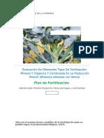 Fertilización en Brócoli