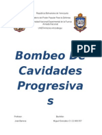 Bombeo de Cavidades Progresivas (2).docx