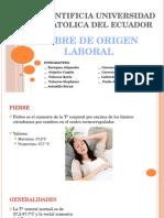 Fiebere Laboral Final