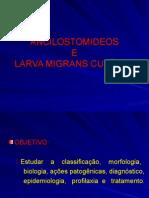 Aula 10 Ancylostomidae e Larva Migrans Cutanea