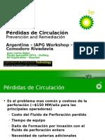 PerdidasdecirculacionArgentina (1)