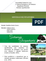 Sistemas Silvipastoris Slide Final