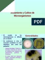 04Cultivo de Microorganismos