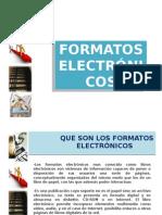 Erminia Formatos Electronicos