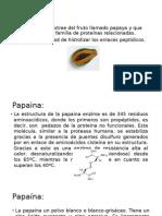 Papaína.pptx