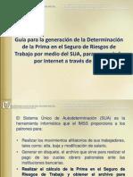 IMSS Riesgo de trabajo 2010 Instructivo