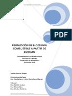 Produccion de Bioetanol Combustible a Partir de Boniato