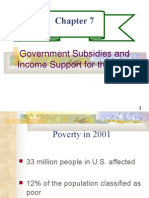 CHAPTER 7- GOVERNMENT SUBSIDIES AND INCOME SUPPORT FOR THE POOR