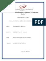 Alvarez Nole Resumen y Flujograma