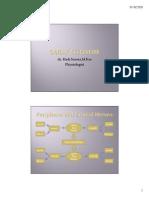 saraf otonom.pdf