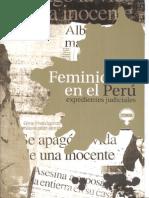 b19 Feminicidio en El Peru