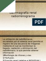 Gammagrafía Renal Radiorrenograma