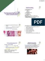 Diagnostic Infectii Stafilo- Streptococice