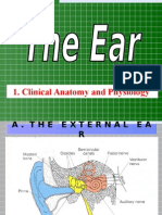 The Ear.ppt