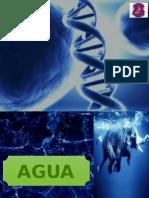 Carbohidratos_y_Agua v GRUPO 2 facultad de Medicina  UNDAC