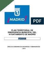 PEMAM PARA PUBLICACION WEB AYTO .pdf