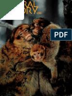 natural history 1994 110 4