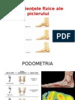Deficienţele Fizice Ale Piciorului - Seminar 7