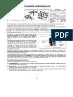 Guia Polimeros y Biomoleculas.pdf