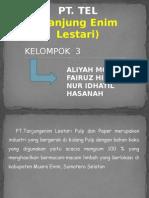 PT TEL (1).pptx