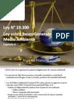 Ingenieriìa Ambiental Captulo v Ley 19300