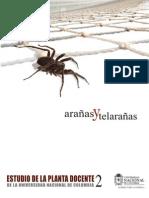 Estudio Planta Docente 2 Arañas y Telarañas