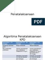Algoritma Penatalaksanaan KPD