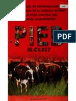 Manual de Enfermedades Infecciosas en El Ganado Bovino de La Zona Del Litoral Ecuatoriano