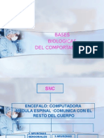 Bases Biologic as Del Comport Amien To