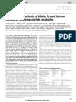 Mutational Evolution in a Lobular Breast Tumour