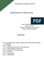 Mihai Maria-Daniela Clasa XII-B - Proiect Zona Agroturistica 1