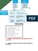 Resumo Direito Tributário - Arts. 139-208