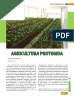 Agri Cultura Prote Gid A