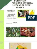 CAFE CACAO BANANO EXPOSICION.pptx