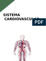 Histologia del Sistema Cardiovascular- MEDICINA HUMANA