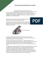 Metodología Para Análisis Experimental de Jamón