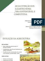 Fertilizantes e Sustentabilidade Slide