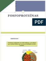 Fosfoproteinas FINAL