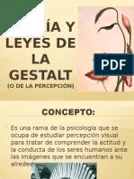 teoría y leyes de la Gestalt.pptx