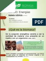 ENERGÌAS RENOVABLES_Biomasa