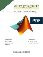 Basic Simulation Lab File