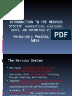 Introduction to Neuroanatomy