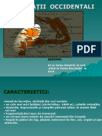 Carpatii Occidentali Nou