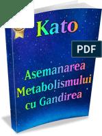 Asemănarea Metabolismului Cu Gândirea