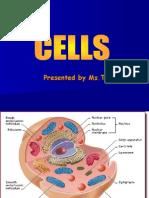 Cells Powerpoint Presentation 1223919167512493 9