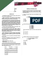 Ensayo Diagnostico (Proceso de Admisión 2010)