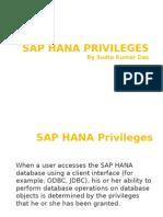 SAP HANA Privileges
