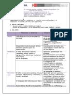 Esquema de Trabajo Individual Modulo II-1