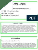 Proyecto de Medio Ambiente (1)