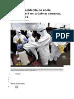 Expertos El Ebola Desaparecera